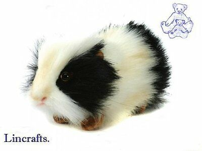 Guineapig,Guinea Pig Black & white Plush Soft Toy by Hansa. From Lincrafts. 4592