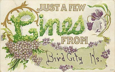 Bird City Kansas~Lilacs and Irises Floral Greetings~A Few Embossed Lines~1911 pc