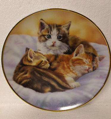 Little Dreamers Peter Fryer from Adorable Kittens Collection Danbury Mint Plate