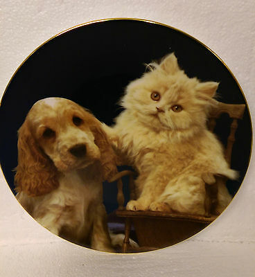 Ginger and Pickles Blue Cross Plate Pet Portraits Royal Worcester Plate