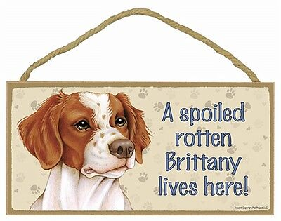 BRITTANY SPANIEL- A Spoiled Rotten Brittany Lives Here Wood SIGN/PLAQUE 5 X 10