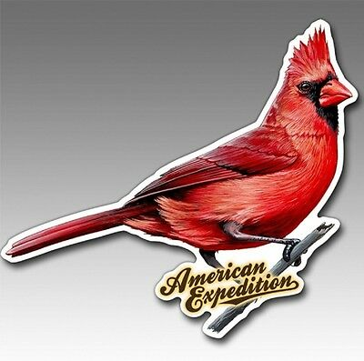Wildlife Auto/Car/Truck MAGNET--CARDINAL--by American Expedition-Made in USA