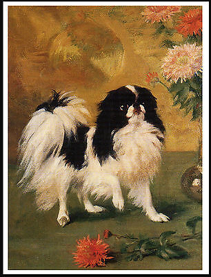 Japanese Chin And Chrysanthemums Lovely Vinage Style Dog Art Print Poster