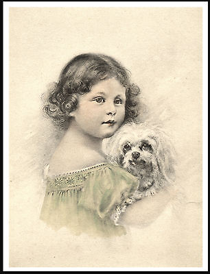 Maltese Little Girl Holding Dog Charming Dog Print Poster