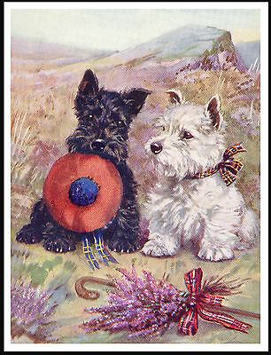 SCOTTISH WESTIE TERRIER DOGS WITH TAM O' SHANTER AND HEATHER DOG PRINT POSTER