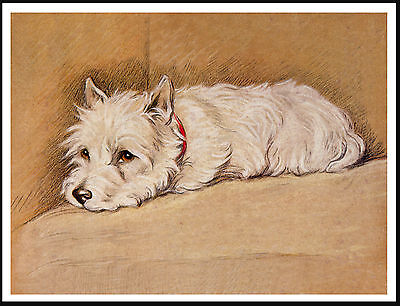 Westie West Highland White Terrier Asleep In Chair Charming Dog Print Poster