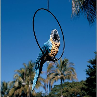 Large Colorful Tropical Paradise Parrot Metal Hanging Ring Perch Bird Sculpture