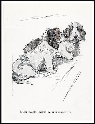 Petit Basset Griffon Vendeen Two Dogs  Lovely Vintage Style Dog Print Poster