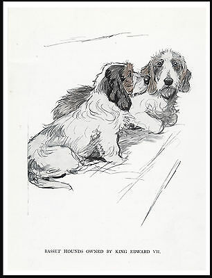 Petit Basset Griffon Vendeen two dogs LOVELY DOG PRINT POSTER