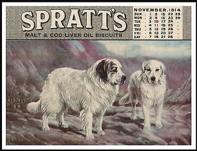 Great Pyrenees Dogs On Spratts Dog Food Calendar Advert Great Dog Print Poster
