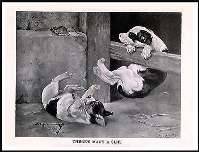 Staffordshire Bull Terrier Puppies Chasing Mouse Lovely Dog Art Print Poster