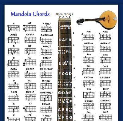 """Mandola Chords Poster 13""""x19"""" With Note Locator - 60 Chords"""