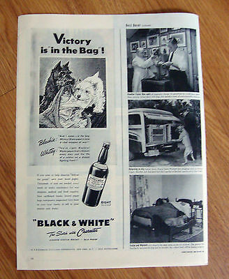 1944 Black White Scottish Scotty Terrier Dog Ad Victory is in the Mail Bag