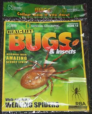 National Geographic Real Life Bugs & Insects Magazine Issue 13 Wasp Spider