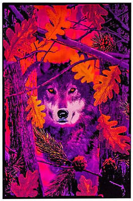 Autumn Wolf - Blacklight Poster - 23X35 Flocked Trees Nature Wolves 1972