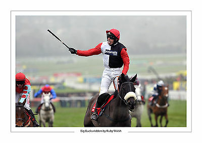 Ruby Walsh Horse Racing Big Bucks A4 Print Photo Cheltenham Festival