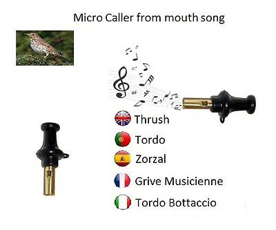 Hunting Bird Caller From Mouth Song Trush