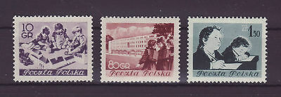 Polonia 1954 stamps