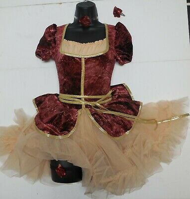 NWT Steampunk Dance Costume Old English Bustier Style w/ ruffled petticoat skirt