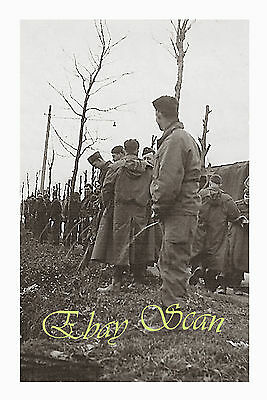 VINTAGE 1940's PHOTO WWII SOLDIERS PEE IN THE WOODS GAY INTEREST 57