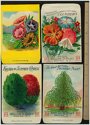 SUPER Lot of 4 - Burt's Seed Packet Envelopes FLOWERS 5 3/4 x 3 3/4 Lithos