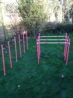 Basic Sliding 3 Jump & 6 Pole Weave Set + 12 pole Webbing by Jessejump Agility