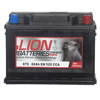 Type 075 520CCA Sealed 3 Years Warranty Lion Batteries Car Battery 12V 60Ah
