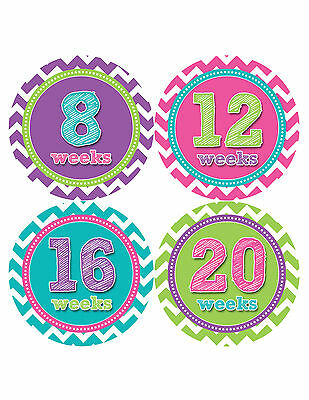 Pregnancy Baby Bump Week Stickers Maternity Weekly Expectant Mom Sticker #910