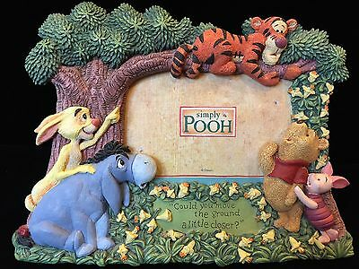 Disney Winnie the Pooh Tigger Eeyore Piglet Rabbit 3D Picture/Photo Frame