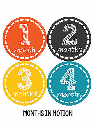 Baby Boy Monthly Milestone Birthday Stickers 12 Month Photo Shirt Sticker #149