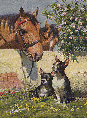 Boston Terrier Charming Dog Greetings Note Card Two Dogs & Horses By Wall
