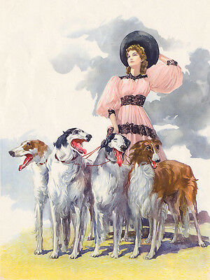 Borzoi Charming Dog Greetings Note Card Four Beautiful Dogs & Lady In Large Hat