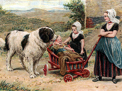 Newfoundland Children And Dog Cart Charming Greetings Note Card