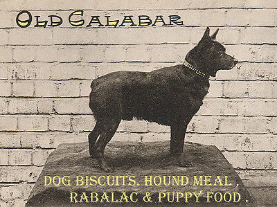 Schipperke Charming Dog Greetings Note Card Old Calabar Dog Biscuit Food Advert
