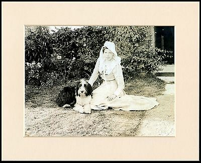 Bearded Collie And Young Lady Great Image Mounted Print Ready To Frame