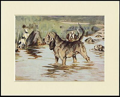 Otterhound Hunting Scene Dog Print Mounted Ready To Frame