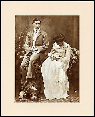Bearded Collie Edwardian Family Group Great Dog Photo Print Ready To Frame