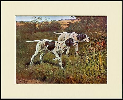 Pointer Two Dogs At Work Great Dog Print Mounted Ready To Frame