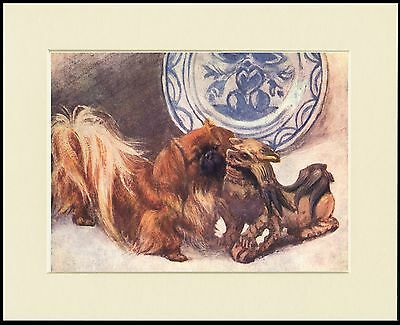 Pekingese And Oriental Statue Lovely Dog Print Mounted Ready To Frame