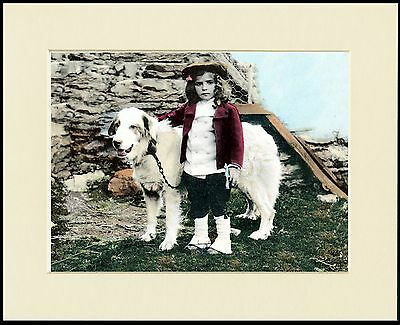 PYRENEAN MOUNTAIN DOG AND LITTLE GIRL LOVELY PRINT MOUNTED READY TO FRAME