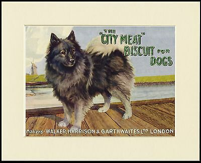 Keeshond Lovely Dog Food Advert Print Mounted Ready To Frame