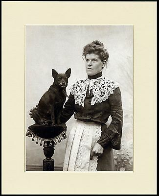 Schipperke Stern Lady And Her Dog Lovely Print Mounted Ready To Frame