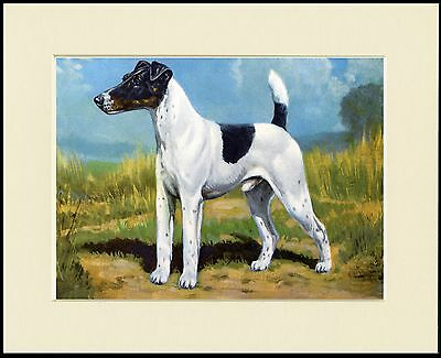 Smooth Fox Terrier Lovely Dog Print Mounted Ready To Frame