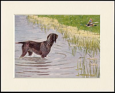 German Shorthaired Pointer And Duck Great Dog Print Mounted Ready To Frame