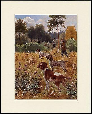 German Shorthaired Pointer Shooting Scene Dog Print Mounted Ready To Frame #1
