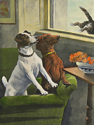 Smooth Fox Terrier And Dachshund Chase Cat Lovely Dog Print Ready To Frame