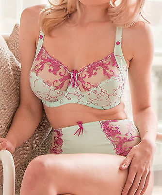 Lower Price....Pour Moi Imogen Rose 3804 Embroidered Full Cup Bra Aqua 32-44 D-J