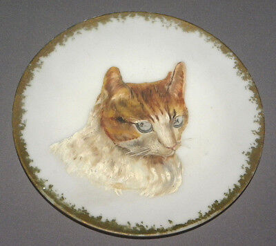 1960s Handpainted Vintage Decorative Cat Plate