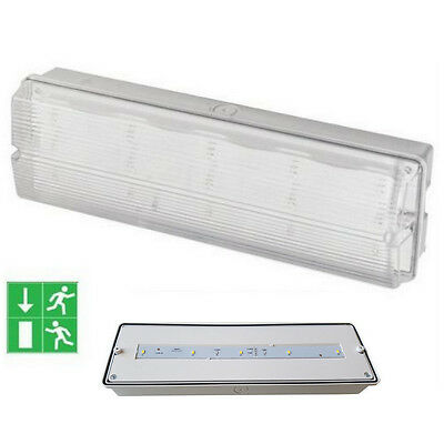 Slimline LED Bulkhead Maintained Emergency Fire Exit IP65 Lamp 1W Polycarbonate
