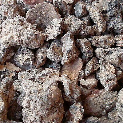 FRANKINCENSE - NEGLECTA AROMATIC INCENSE RESIN 25 - 100gm PORTIONS